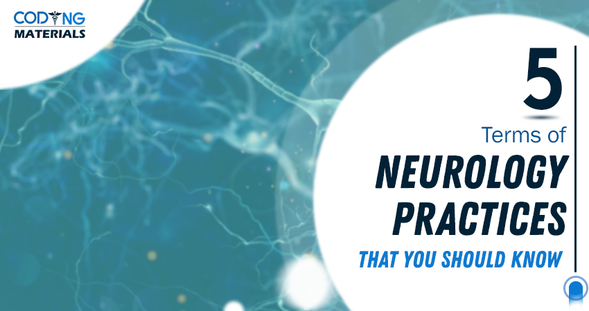 5 Terms Of Neurology Practices That You Should Know