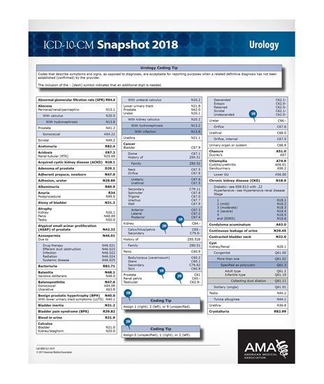 Picture of ICD-10 Snapshot  2018 Coding Card Urology