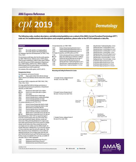Picture of CPT 2019 Express Reference Coding Card: Dermatology